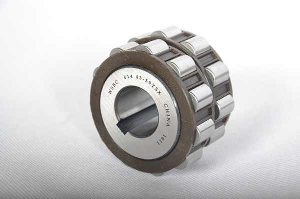 Eccentric Bearings